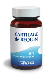CARTILAGE DE REQUIN