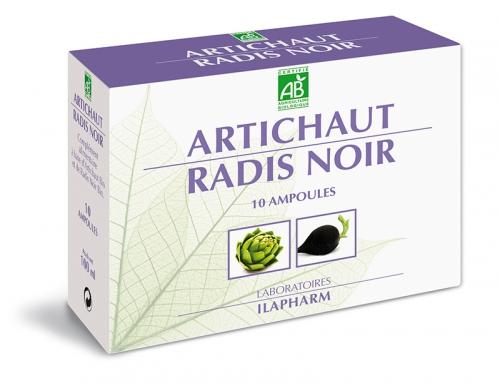 ARTICHAUT RADIS NOIR BIO